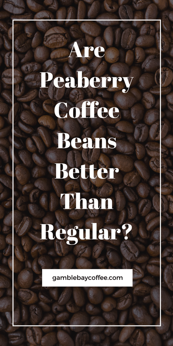 Peaberry Coffee Beans vs Regular Coffee Beans
