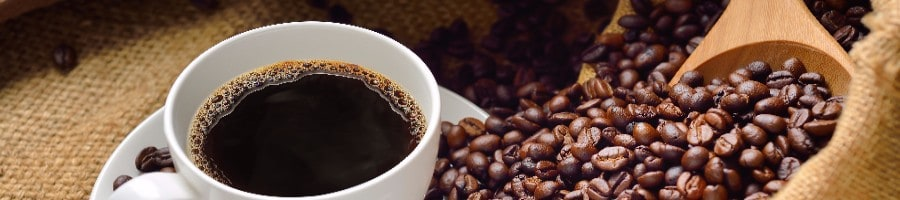 The Chemex vs the French Press: Which is Best?